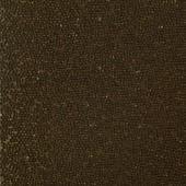 PAZ6319