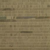 PAZ6403